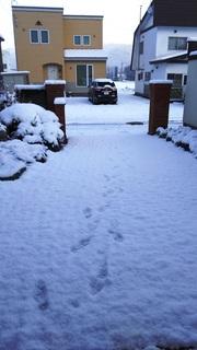 初雪3.jpg